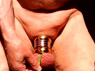 balls bondage sounding with nettles peehole