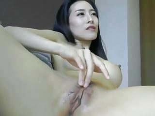 Asia Fox 3