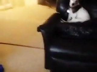 Whiteboy jacking and watching