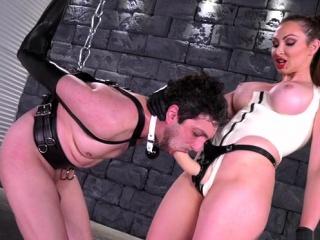 Brunette slave bondage and cumshot